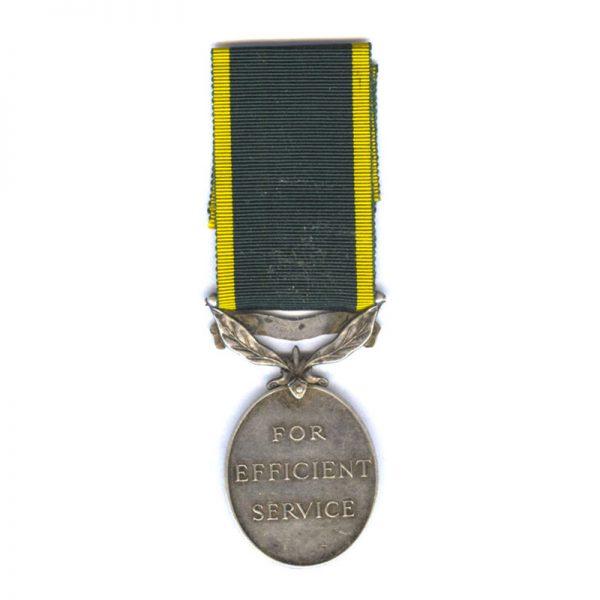 Territorial Force Efficiency Medal (GVI) 2