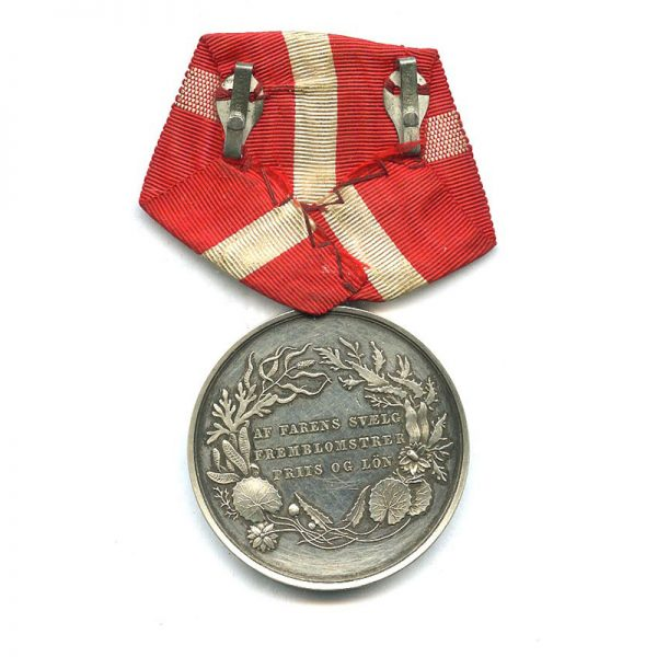 Medal for Saving Life from Drowning 2