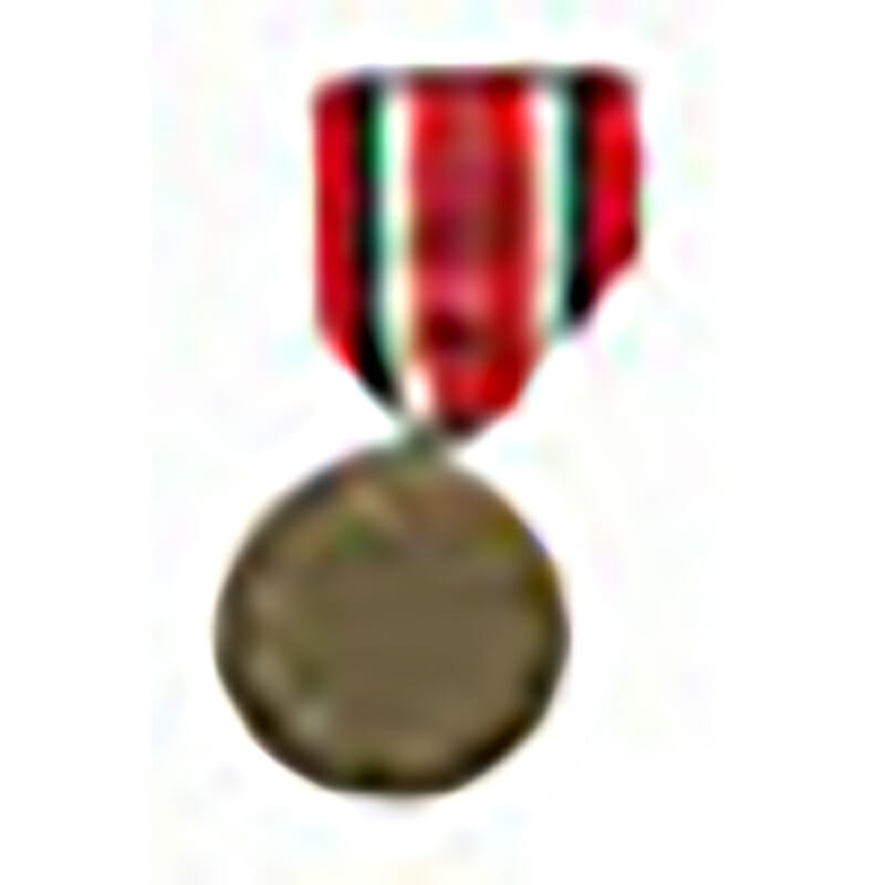 Red Cross medal bronze 2